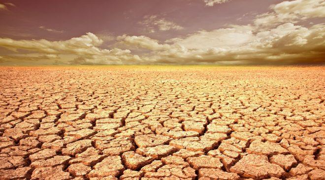 14388953 m 660x365 - IBM Using Blockchain and IoT To Combat California Drought